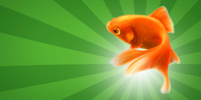 Aparição do Peixe